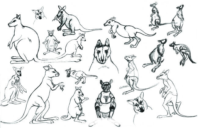 Wallaby Iterations in 2D